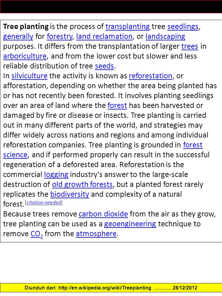 Tree planting is the process of transplanting tree seedlings, generally for forestry, land reclamation, or landscaping purposes.