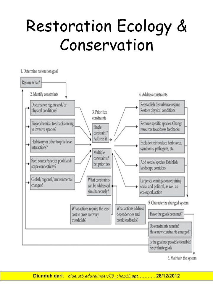 Restoration Ecology & Conservation Diunduh dari: blue.utb.edu/elinder/CB_chap15.ppt ……….. 28/12/2012