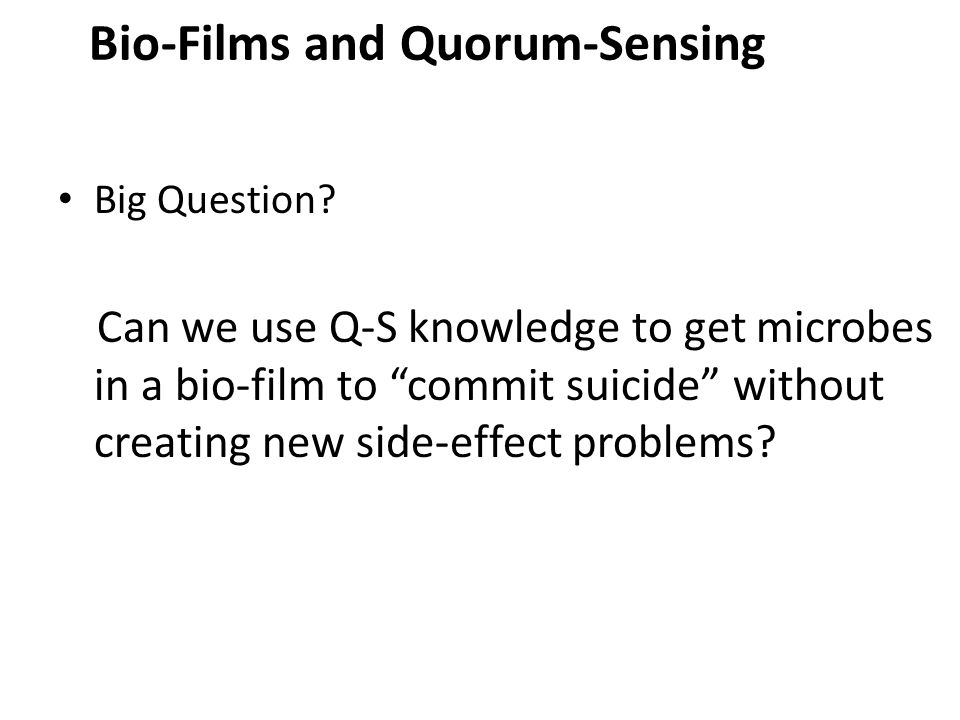 "Big Question? Can we use Q-S knowledge to get microbes in a bio-film to ""commit suicide"" without creating new side-effect problems? Bio-Films and Quor"