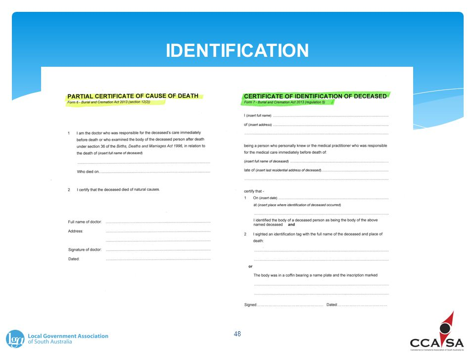 IDENTIFICATION 48