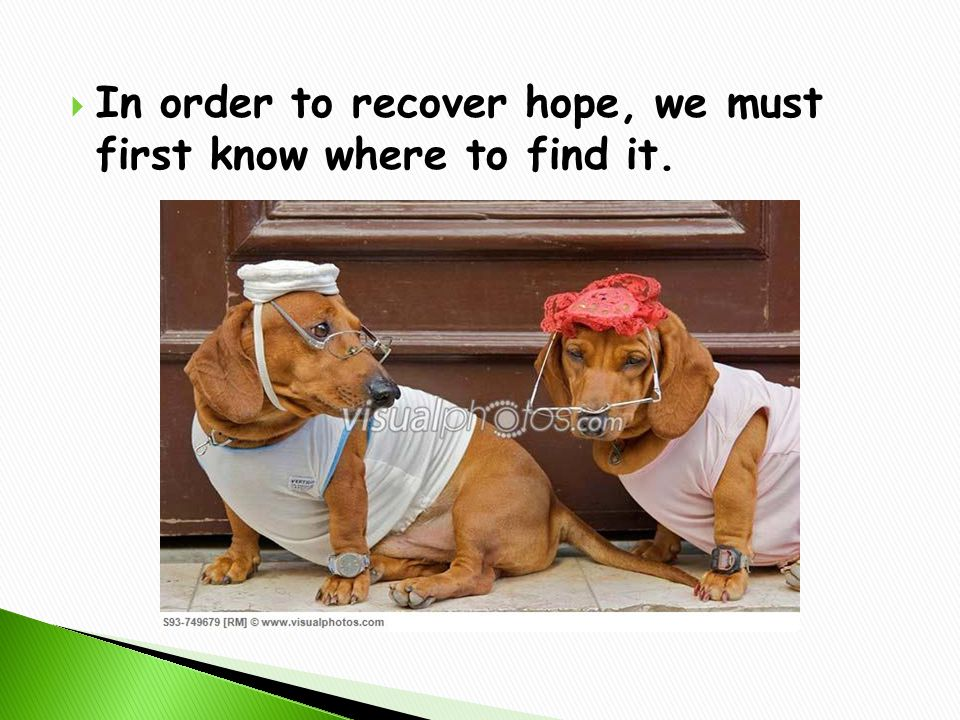  In order to recover hope, we must first know where to find it.