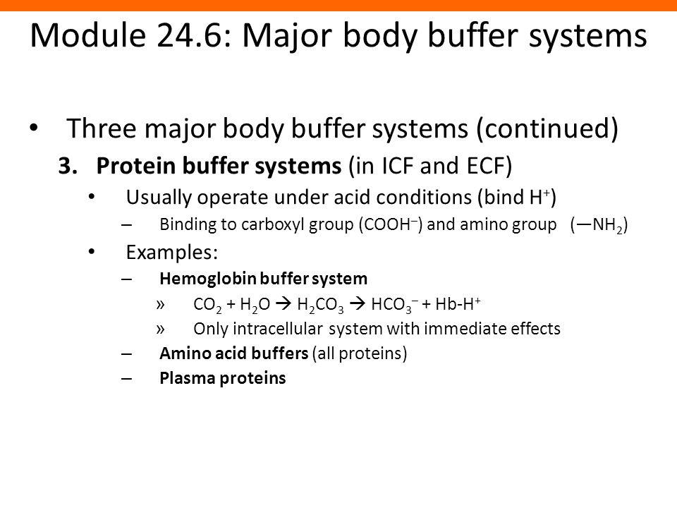 Module 24.6: Major body buffer systems Three major body buffer systems (continued) 3.Protein buffer systems (in ICF and ECF) Usually operate under aci