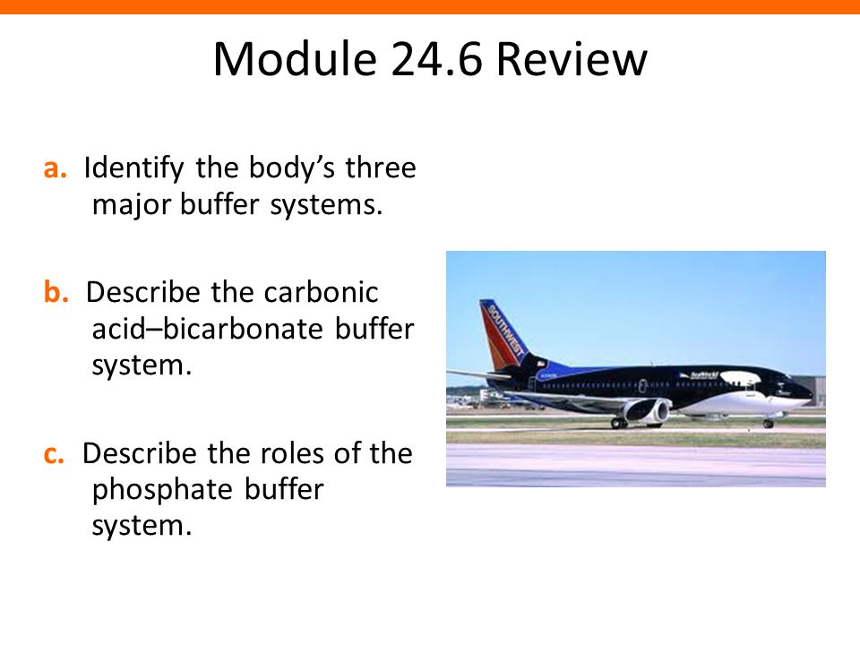 Module 24.6 Review a. Identify the body's three major buffer systems. b. Describe the carbonic acid–bicarbonate buffer system. c. Describe the roles o