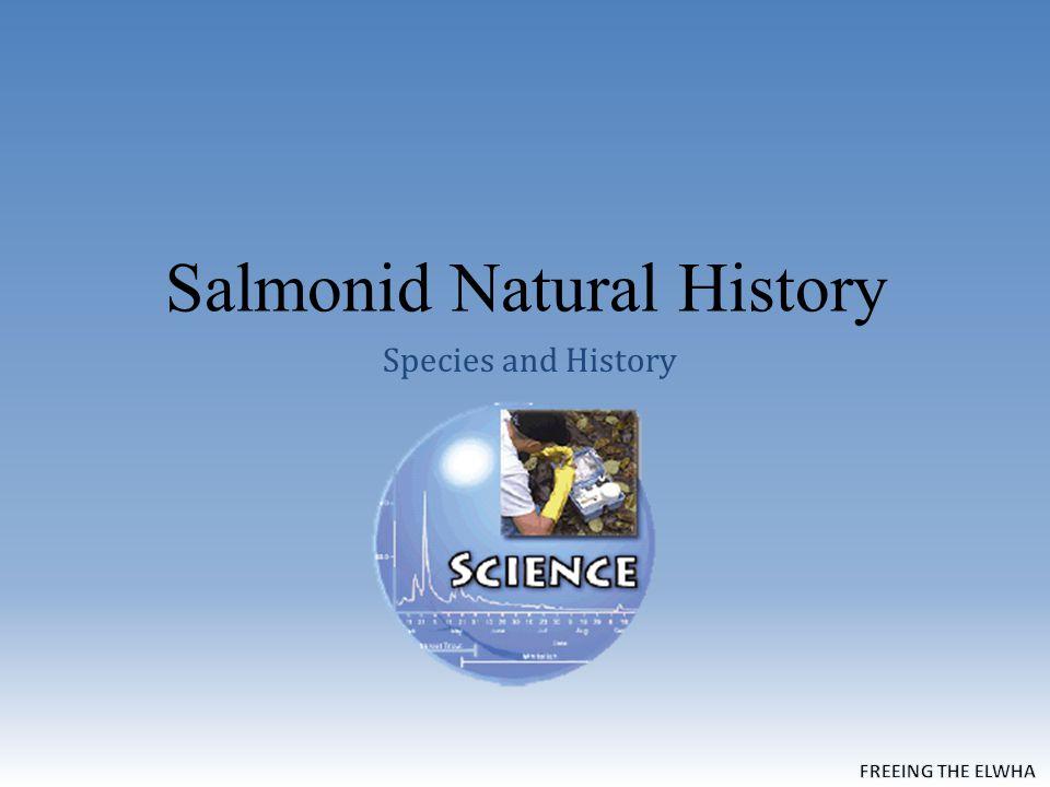 Salmonid Natural History Species and History
