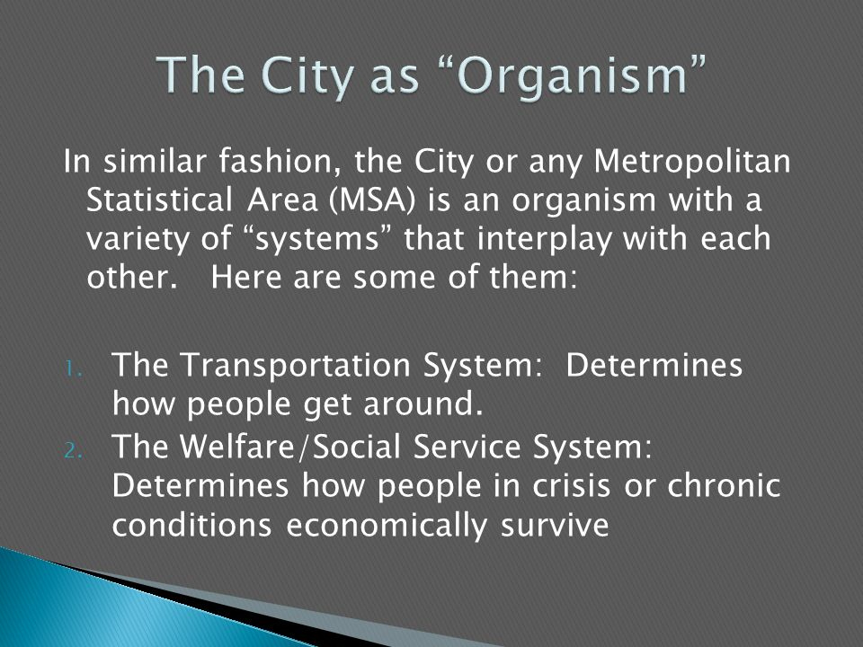 In similar fashion, the City or any Metropolitan Statistical Area (MSA) is an organism with a variety of systems that interplay with each other.