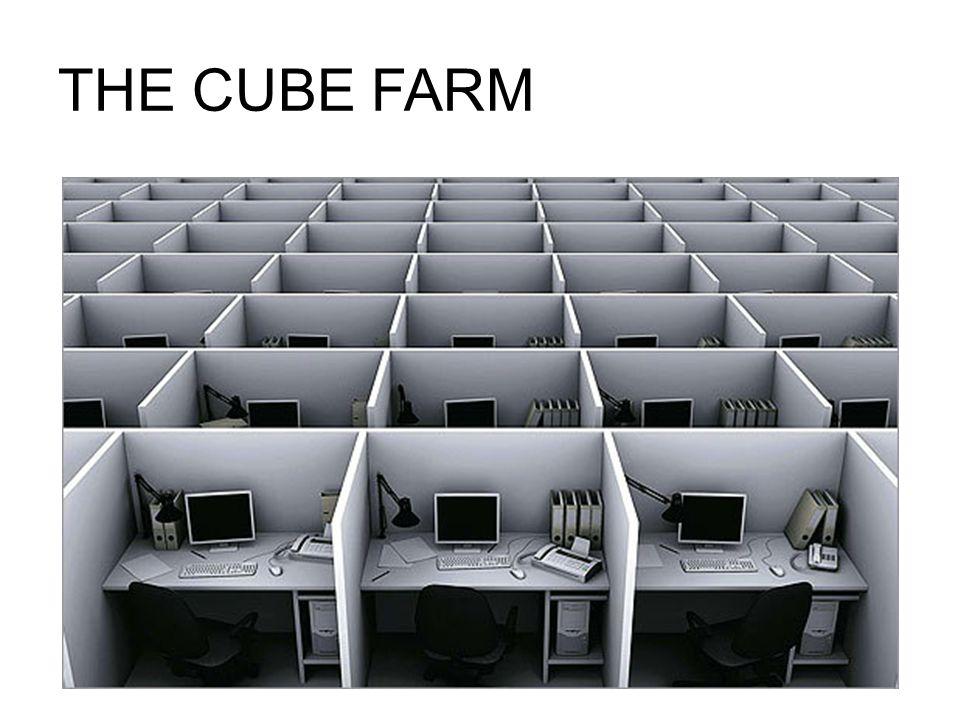 THE CUBE FARM