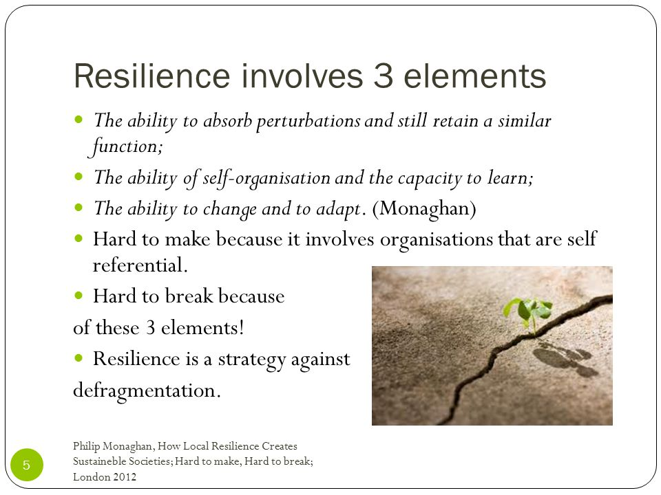 Resilience involves 3 elements 5 The ability to absorb perturbations and still retain a similar function; The ability of self-organisation and the cap