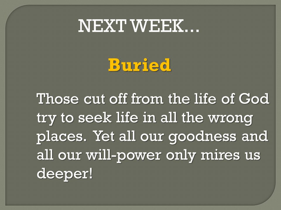 NEXT WEEK...Buried Those cut off from the life of God try to seek life in all the wrong places.