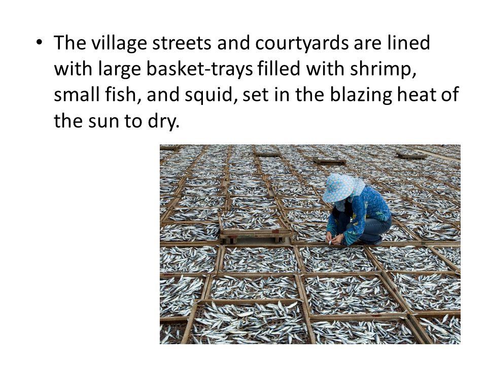 Happy Farming Life