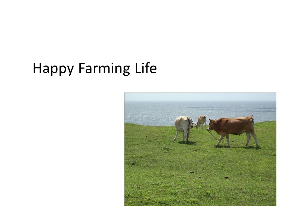 Happy Farming Life
