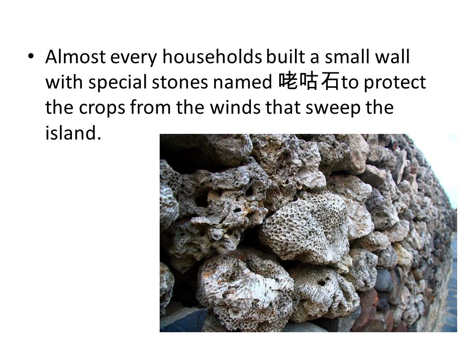 Almost every households built a small wall with special stones named 咾咕石 to protect the crops from the winds that sweep the island.