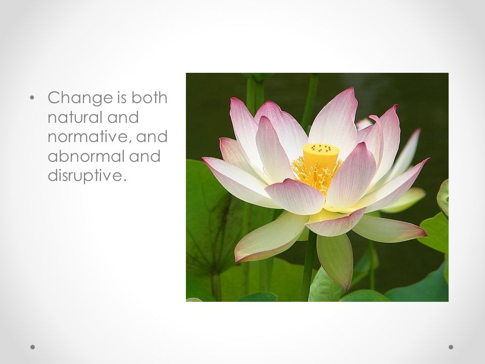 Change is both natural and normative, and abnormal and disruptive.