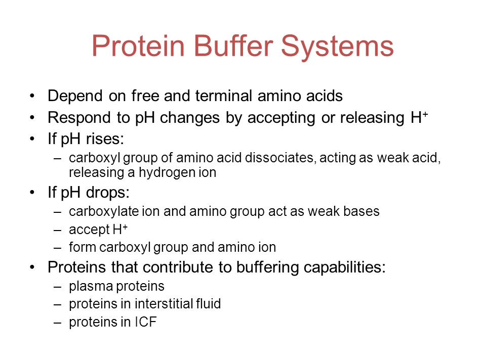 Protein Buffer Systems Depend on free and terminal amino acids Respond to pH changes by accepting or releasing H + If pH rises: –carboxyl group of amino acid dissociates, acting as weak acid, releasing a hydrogen ion If pH drops: –carboxylate ion and amino group act as weak bases –accept H + –form carboxyl group and amino ion Proteins that contribute to buffering capabilities: –plasma proteins –proteins in interstitial fluid –proteins in ICF