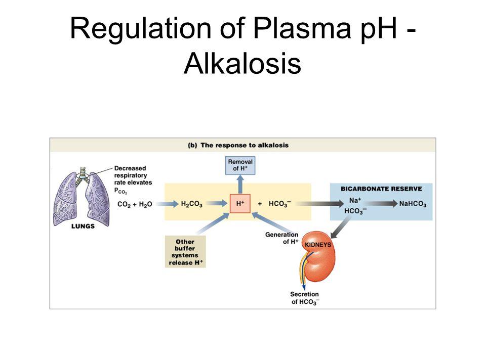 Regulation of Plasma pH - Alkalosis Figure 27–11b