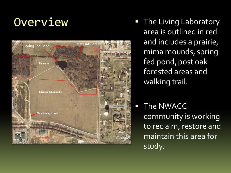 Overview  The Living Laboratory area is outlined in red and includes a prairie, mima mounds, spring fed pond, post oak forested areas and walking trail.