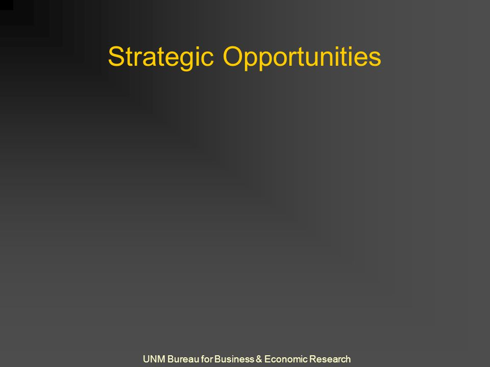 UNM Bureau for Business & Economic Research Strategic Opportunities