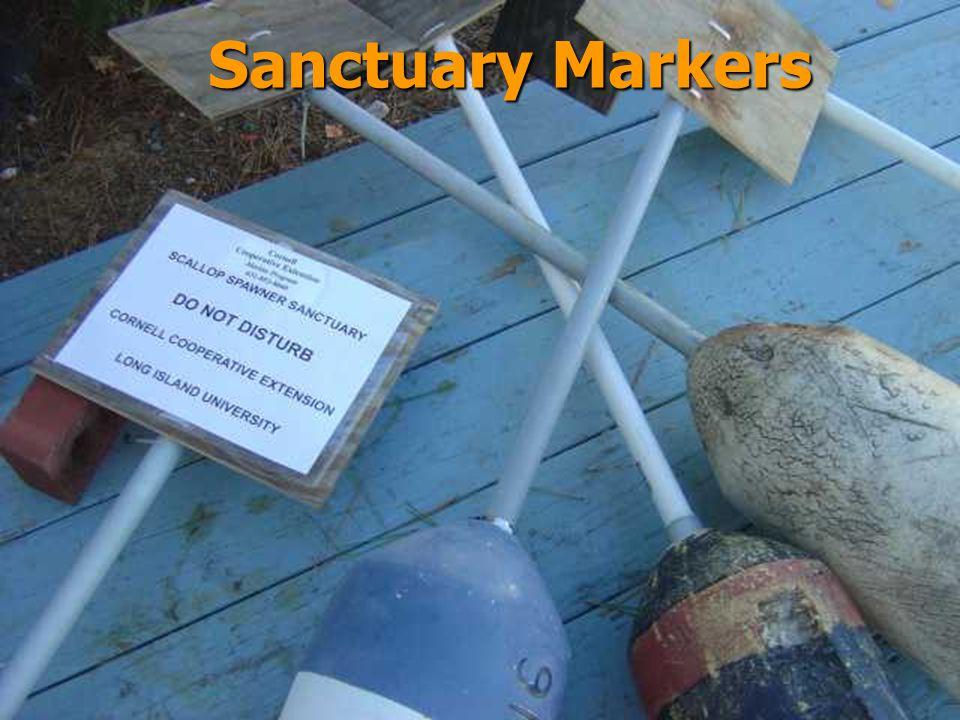 Sanctuary Markers