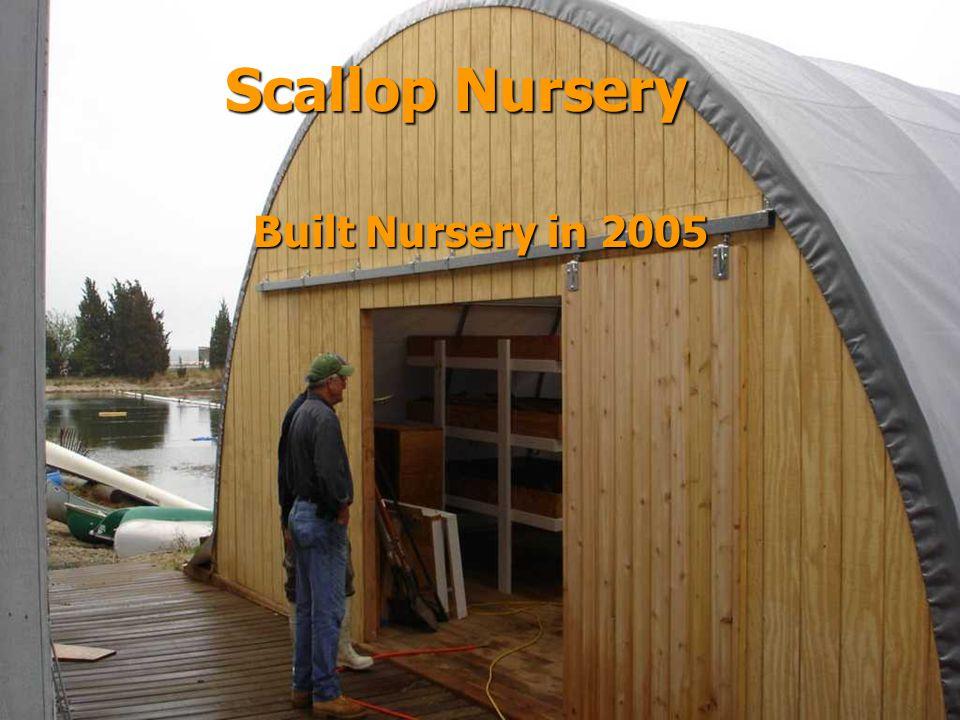 Built Nursery in 2005 Scallop Nursery