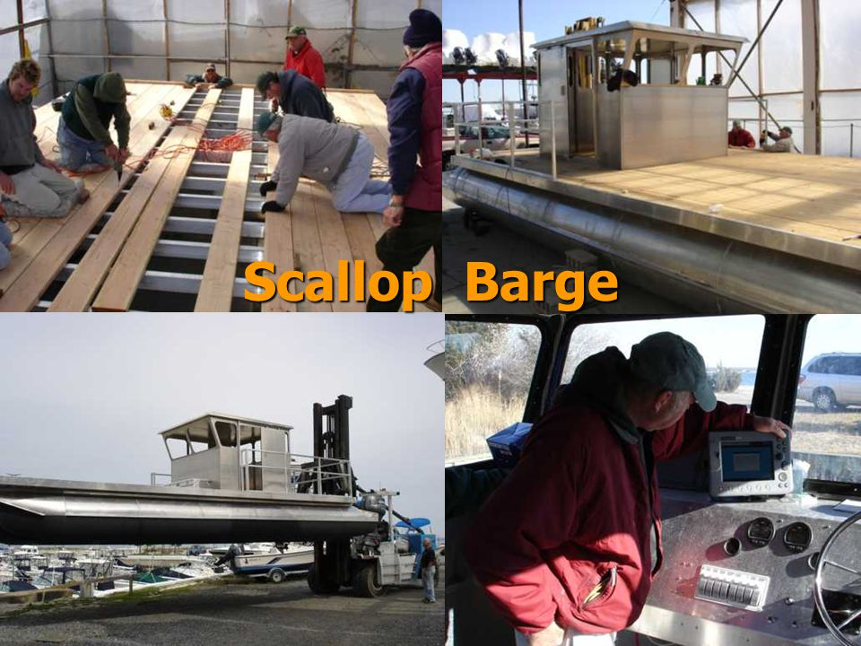 Scallop Barge