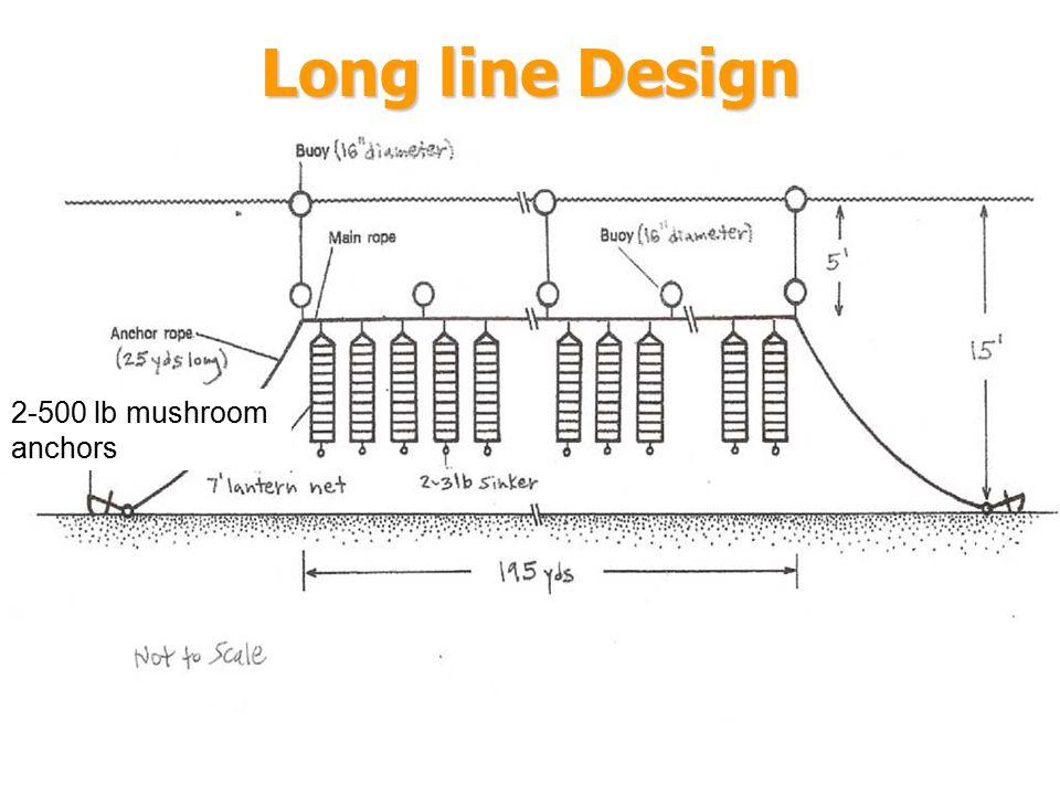 Long line Design 2-500 lb mushroom anchors 1