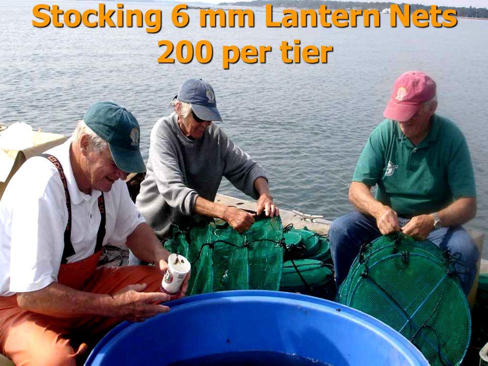 Stocking 6 mm Lantern Nets 200 per tier