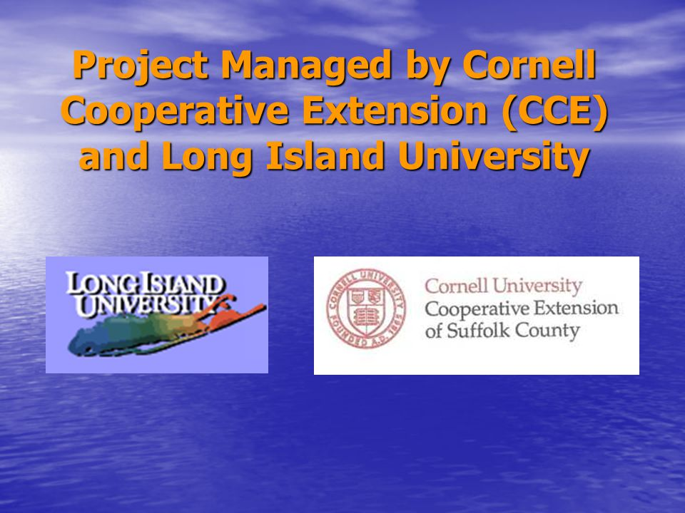 Long Island University Data Collection Data Collection –Spat collectors Technical monitoring Technical monitoring –Genetics –Water Quality –Food Supply –Survival Rate