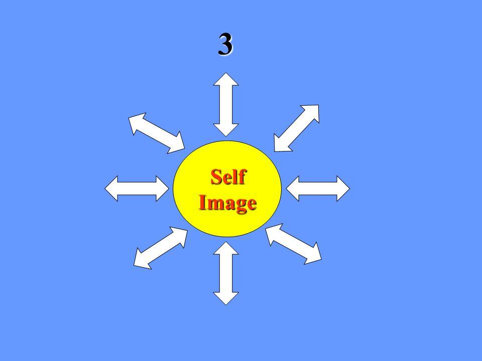 SelfImage 3
