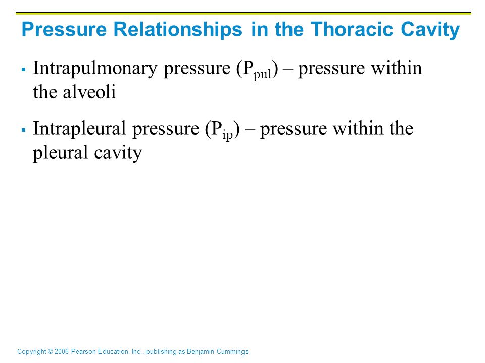 Copyright © 2006 Pearson Education, Inc., publishing as Benjamin Cummings Pressure Relationships in the Thoracic Cavity  Intrapulmonary pressure (P pul ) – pressure within the alveoli  Intrapleural pressure (P ip ) – pressure within the pleural cavity
