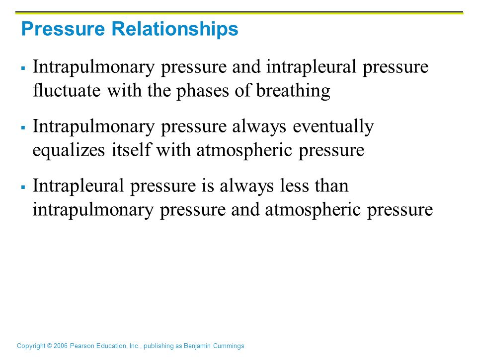 Copyright © 2006 Pearson Education, Inc., publishing as Benjamin Cummings Pressure Relationships  Intrapulmonary pressure and intrapleural pressure fluctuate with the phases of breathing  Intrapulmonary pressure always eventually equalizes itself with atmospheric pressure  Intrapleural pressure is always less than intrapulmonary pressure and atmospheric pressure