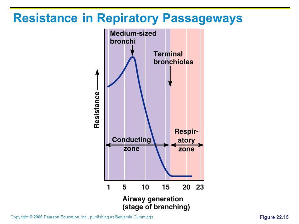 Copyright © 2006 Pearson Education, Inc., publishing as Benjamin Cummings Resistance in Repiratory Passageways Figure 22.15