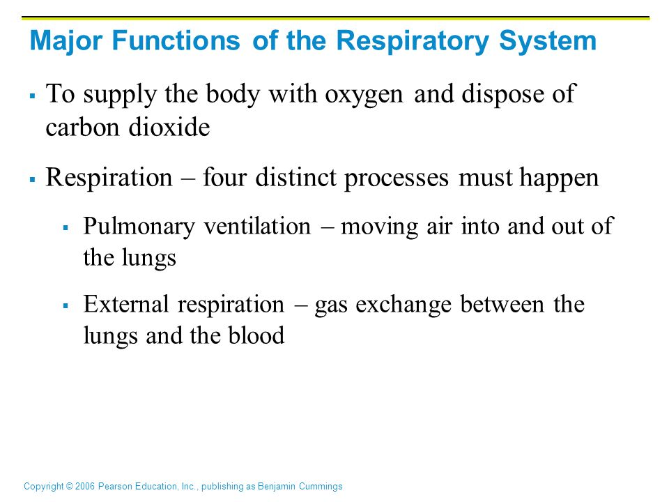 Copyright © 2006 Pearson Education, Inc., publishing as Benjamin Cummings Major Functions of the Respiratory System  To supply the body with oxygen and dispose of carbon dioxide  Respiration – four distinct processes must happen  Pulmonary ventilation – moving air into and out of the lungs  External respiration – gas exchange between the lungs and the blood