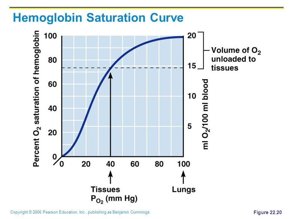 Copyright © 2006 Pearson Education, Inc., publishing as Benjamin Cummings Hemoglobin Saturation Curve Figure 22.20