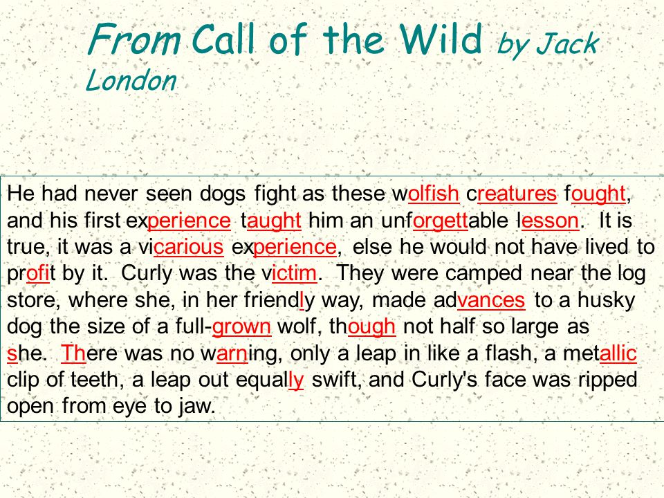 From Call of the Wild by Jack London He had never seen dogs fight as these wolfish creatures fought, and his first experience taught him an unforgetta