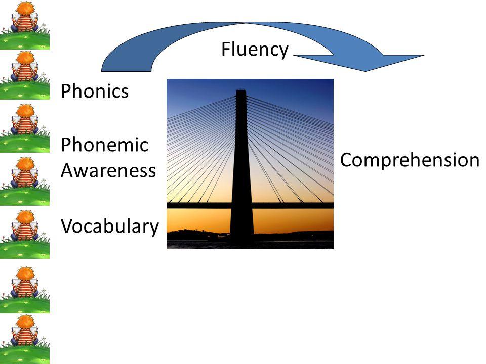 Phonics Phonemic Awareness Vocabulary Comprehension Fluency