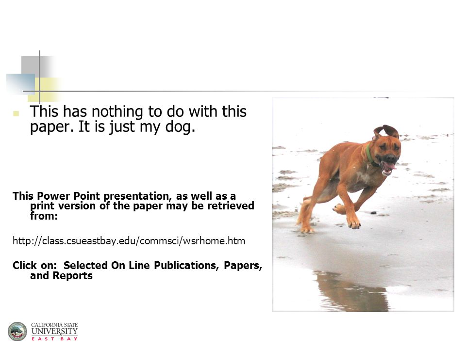 This has nothing to do with this paper. It is just my dog.