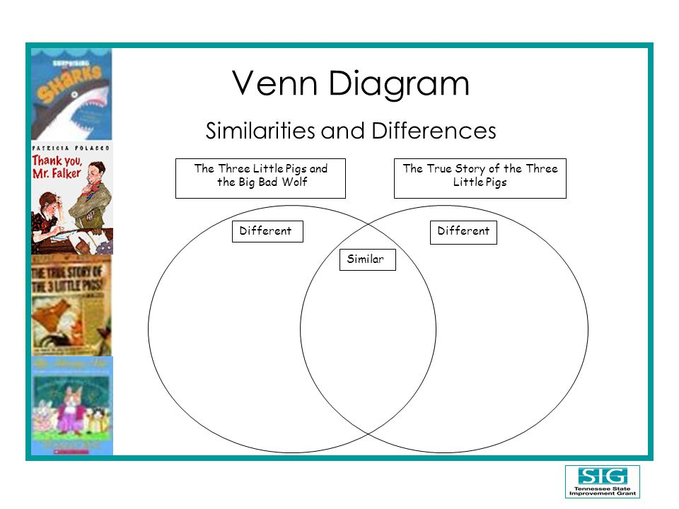 Venn Diagram Similarities and Differences The Three Little Pigs and the Big Bad Wolf The True Story of the Three Little Pigs Similar Different