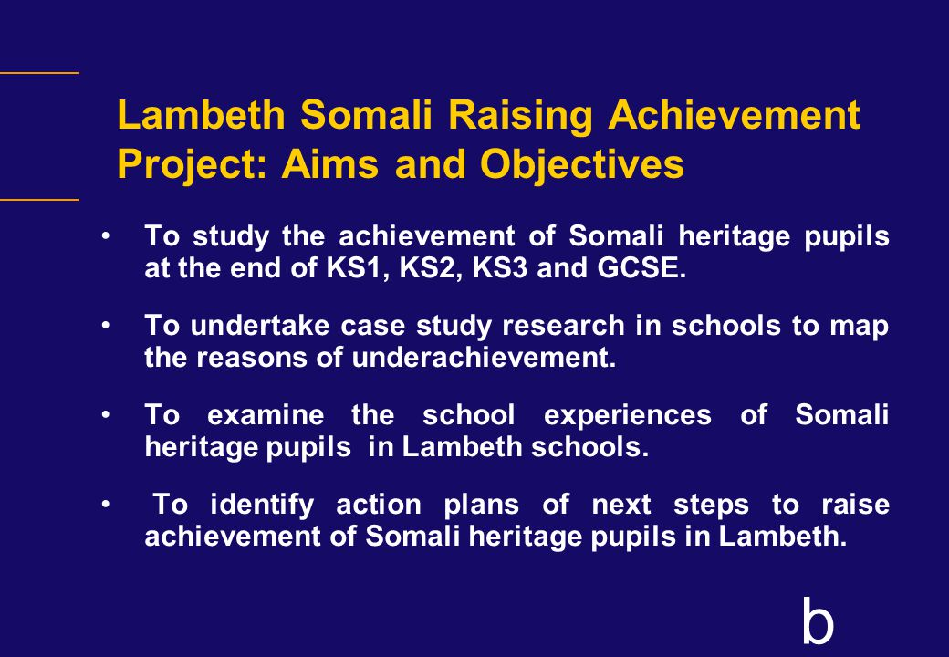 b Project Activities Plan and Timetable The life of the project is 1 year and will have three phases: Phase 1 Activities: Research into Somali pupil underachievement in schools (July 2006 - January 2007).
