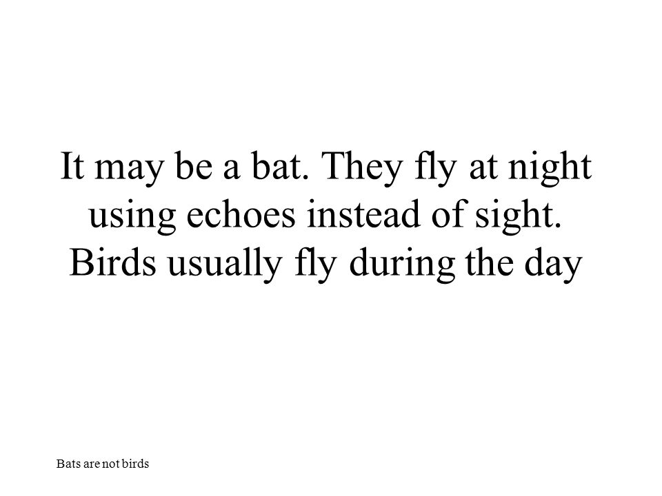 Bats are not birds It may be a bat. They fly at night using echoes instead of sight. Birds usually fly during the day