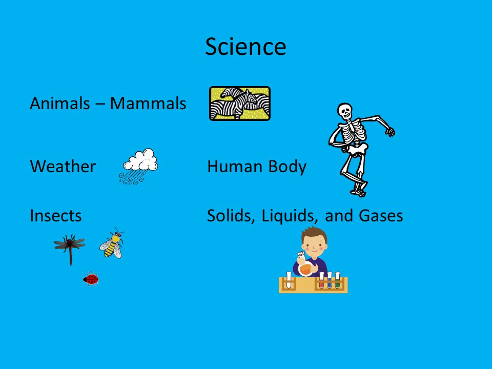 Science Animals – Mammals Weather Human Body Insects Solids, Liquids, and Gases