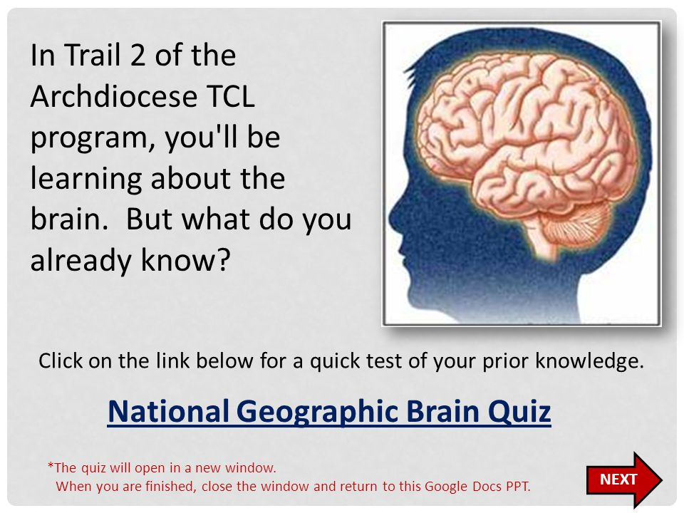 In Trail 2 of the Archdiocese TCL program, you'll be learning about the brain. But what do you already know? Click on the link below for a quick test
