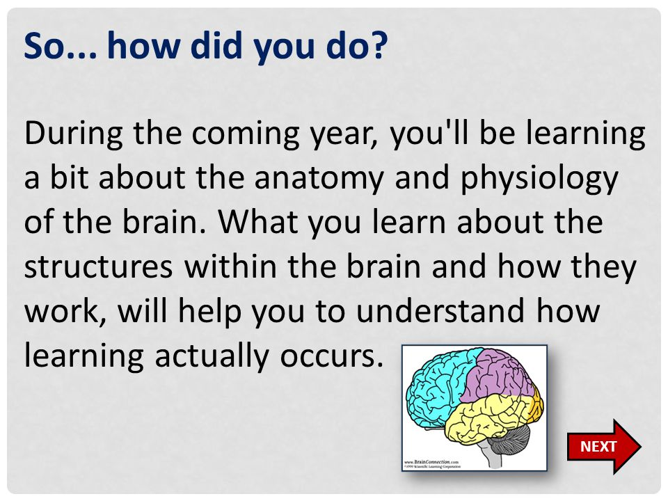 So... how did you do? During the coming year, you'll be learning a bit about the anatomy and physiology of the brain. What you learn about the structu