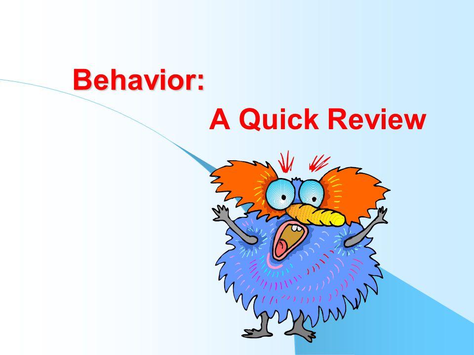 More Resources www.disciplinehelp.com www.BehaviorAdvisor.com www.sopriswest.com www.hes-inc.com