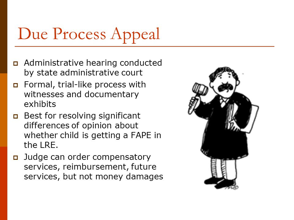 Due Process Appeal  Administrative hearing conducted by state administrative court  Formal, trial-like process with witnesses and documentary exhibi