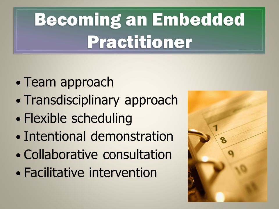 Team approach Transdisciplinary approach Flexible scheduling Intentional demonstration Collaborative consultation Facilitative intervention