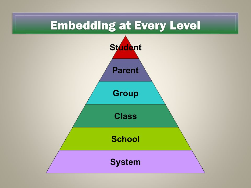 Embedding at Every Level Student Parent Group Class School System