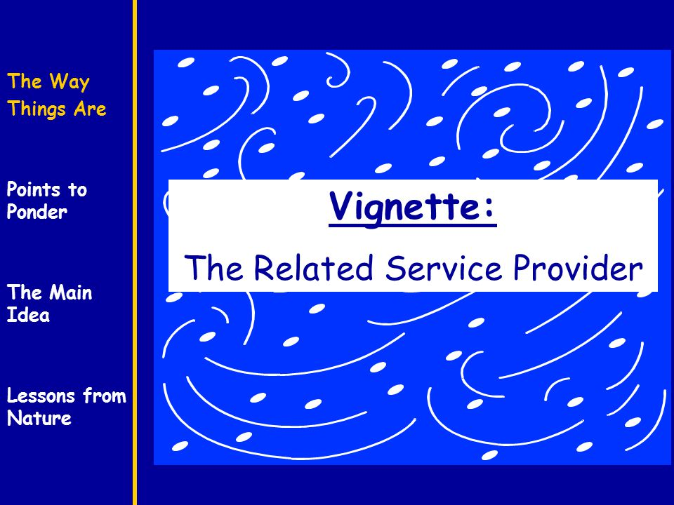 The Way Things Are Points to Ponder The Main Idea Lessons from Nature Vignette: The Related Service Provider