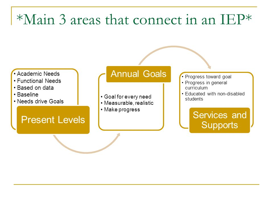 Components of the IEP 1.