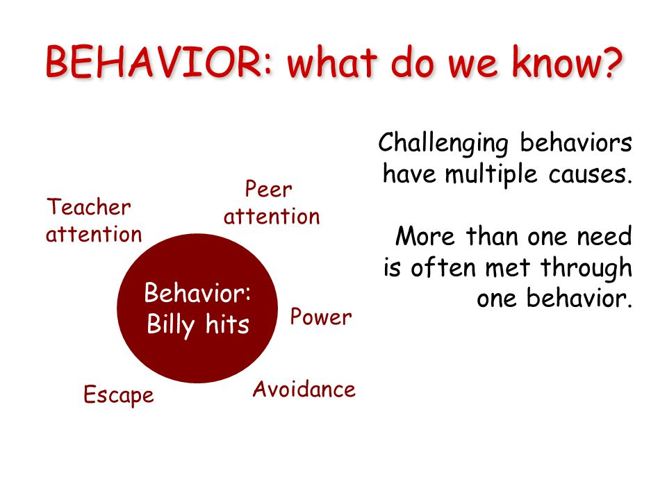 BEHAVIOR: what do we know. Challenging behaviors have multiple causes.