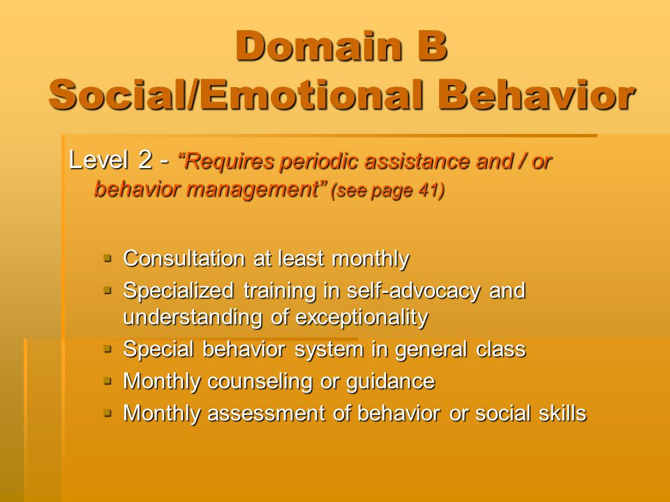 "Domain B Social/Emotional Behavior Level 2 - ""Requires periodic assistance and / or behavior management"" (see page 41)  Consultation at least monthly"