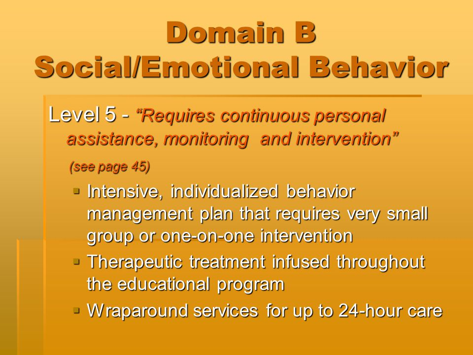 "Domain B Social/Emotional Behavior Level 5 - ""Requires continuous personal assistance, monitoring and intervention"" (see page 45) (see page 45)  Inte"